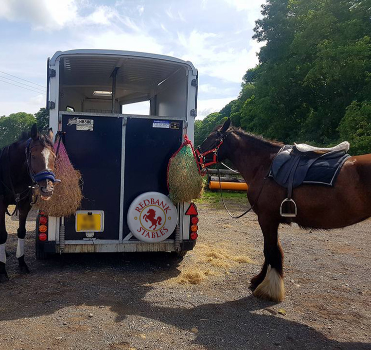 Redbank Stables Horsebox
